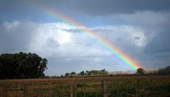 Pronóstico: luego de las lluvias cambia el ambiente