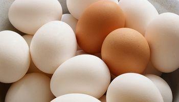 Argentina es el sexto consumidor de huevos del mundo