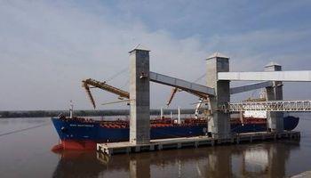Argentina, líder en exportaciones de harina y aceite de soja