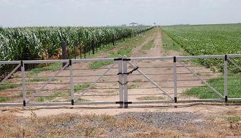 Puntos claves para acordar un buen contrato de arrendamiento rural