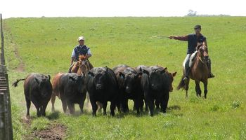 San Luis: aumento salarial para el arreo de ganado y almacenamiento de granos