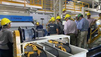 El sector semillero busca potenciar las exportaciones a Brasil