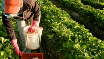 Acuerdo Marco para aumentar el trabajo rural registrado en Buenos Aires