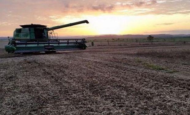 La cosecha de soja en Brasil se encuentra en la recta final.