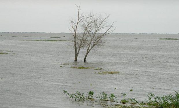 Además, asegura que El Niño continuará debilitándose hasta junio.