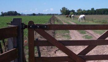 Ajuste del Inmobiliario Rural perjudica a pequeños productores