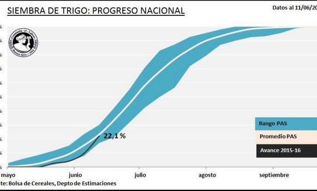 Progreso nacional de siembra de trigo. Fuente: BCBA.