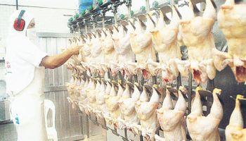La avicultura cerró el 2016 a puro retroceso