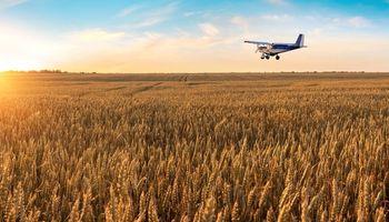 """Sembrar desde el aire: la nueva especialidad de la """"fuerza aérea agrícola"""""""