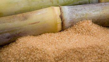 Estados Unidos amplió en 4 mil toneladas la cuota de importación de azúcar crudo argentino