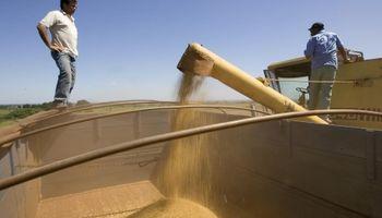 Tras los cambios en retenciones, el Estado se queda con el 60% de la renta agrícola