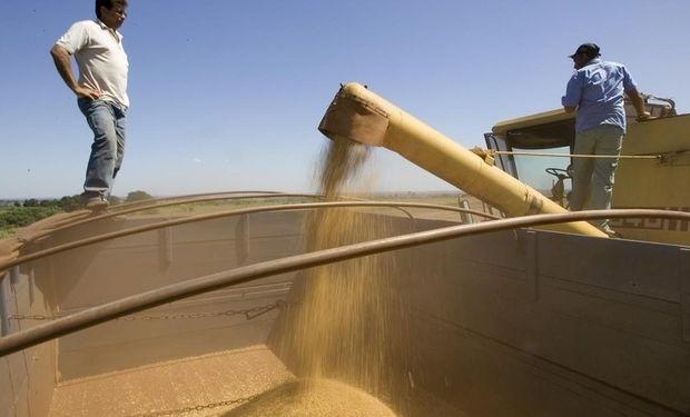 Aumentó 5 puntos la participación del estado sobre la renta agrícola tras los cambios en los derechos de exportación.