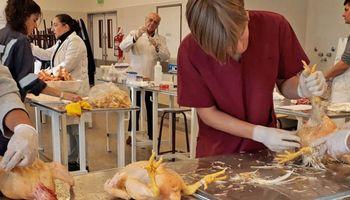 Residuos de manzana, una alternativa para alimentar pollos parrilleros