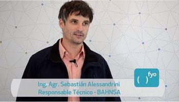 Bahnsa: pensando en el producto y en el productor