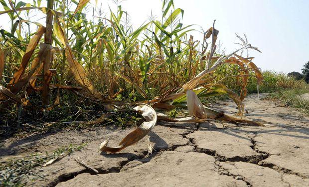 El (posible) origen de la sequía extrema que originó una bajante histórica del río