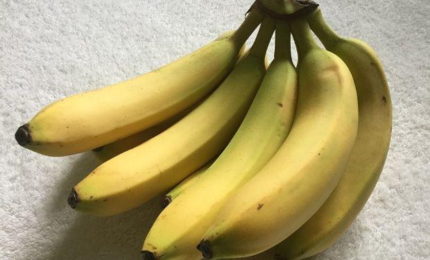 ¿Bananas en peligro? Un hongo amenaza a la producción global y lanzan una cooperación internacional para enfrentarlo