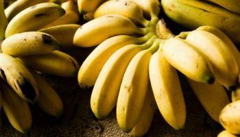 """Productores norteños harán un """"bananazo"""" en Plaza de Mayo"""