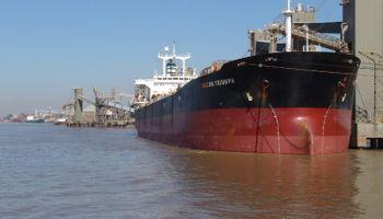 En el primer semestre del año, los complejos oleaginosos y cerealeros representaron el 43% de las exportaciones argentinas