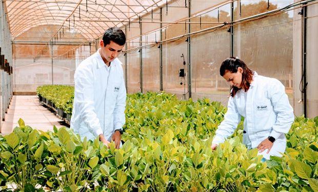 El desarrollo de herramientas para protección de cultivos, semillas y soluciones digitales de BASF contribuyen a impulsar una agricultura cada vez más sustentable para el beneficio de los productores, el medioambiente y la sociedad.