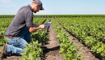 Adelanto para productores: las novedades en protección de cultivos, semillas y digitalización de BASF en Aapresid