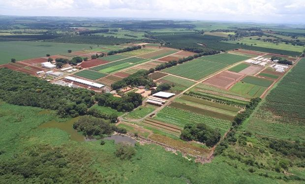 Cumple 40 años la estación de investigación agrícola que desarrolló las moléculas más utilizadas por productores