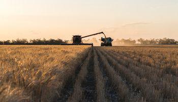 BASF lanzó el innovador herbicida Tirexor