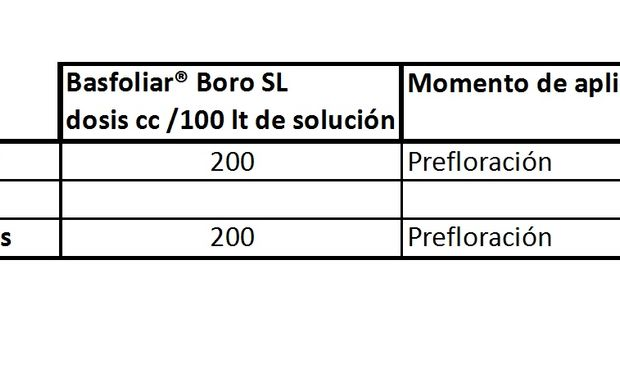 Dosis recomendadas de Basfoliar Boro.