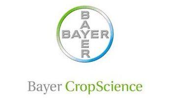 Bayer: más de 100 años al lado del productor argentino