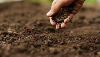 Es ahora: el rol del agro para dar respuesta a los desafíos globales