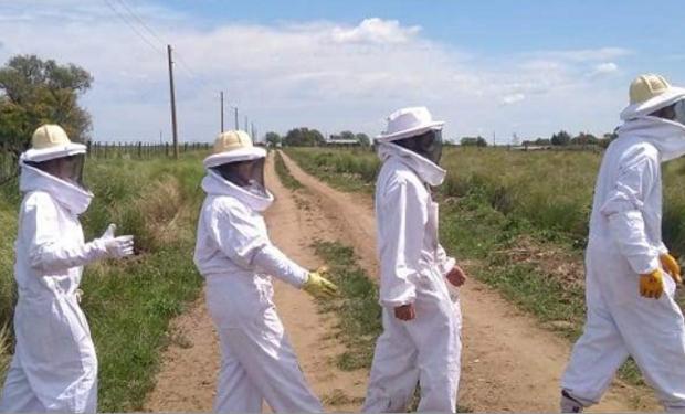 Los Beatles de la miel