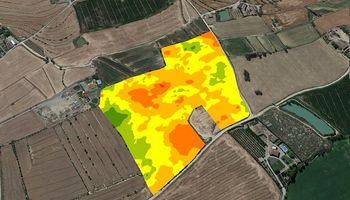 Cómo obtener mayor rentabilidad a través de la agricultura de precisión