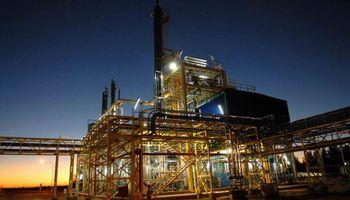 Biocombustibles: las razones que no permiten al sector expresar su potencial