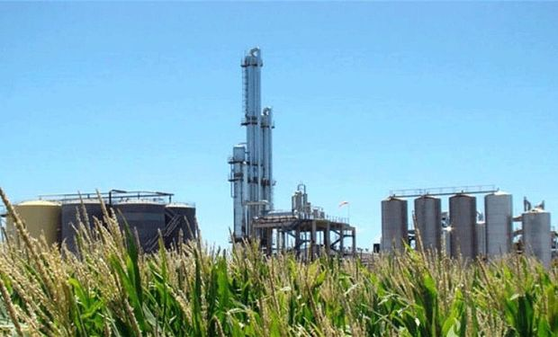 Biocombustibles: productores de bioetanol piden a Diputados que aprueben la prórroga de la ley