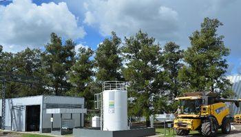 Soja: una alternativa ante el precio de los combustibles