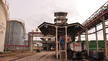 Productores de biodiésel pierden $ 5 millones al mes por el cambio de fórmula