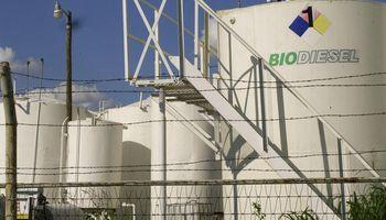 Por qué necesitamos más biocombustibles