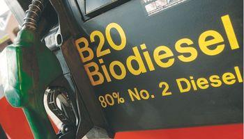 Subió biodiésel pero no aumentaría gasoil