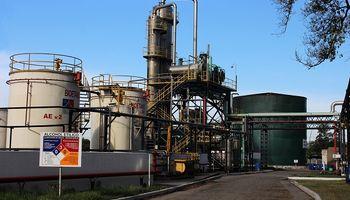 Biocombustibles: el Gobierno busca extender hasta 2024 la obligación de los cortes en las naftas