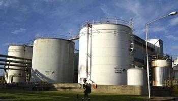"""Biodiesel: tras la actualización del Gobierno, pymes piden """"urgente"""" revisión y advierten que peligran 10.000 empleos"""
