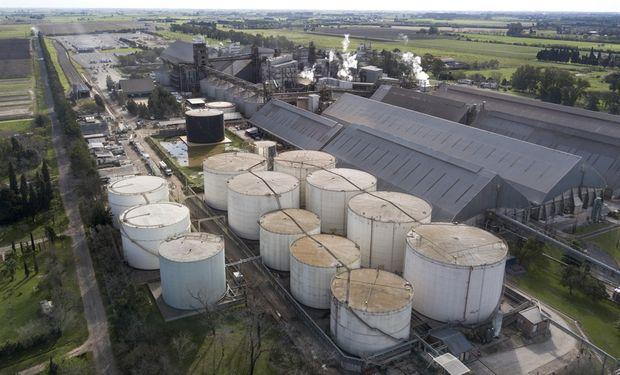 Los productores temen un nuevo cierre de las exportaciones luego de la apertura en septiembre del año pasado.
