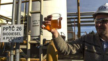 Biodiésel: la Cámara de Biocombustibles respondió a la medida de Estados Unidos