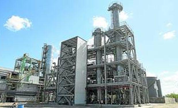 Biodiesel: aprobarán ley en el Senado