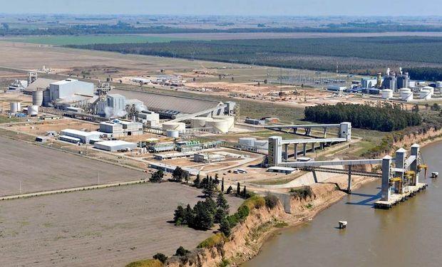 Crecen fuerte la producción y las exportaciones del biocombustible.