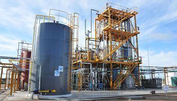 Biodiesel: redujeron los derechos de exportación