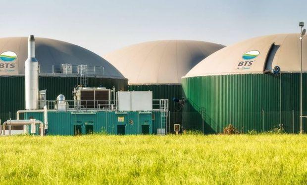El más ambicioso de los proyectos es el de la firma Biomasa Venado SA,