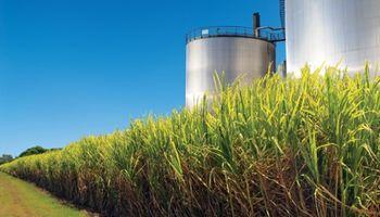 Trazarán el mapa de las bioenergías en la Argentina