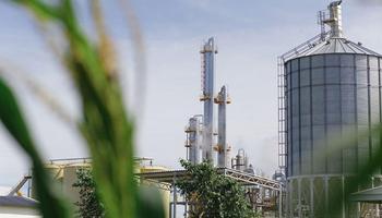 """Biocombustibles: denuncia contra Lopetegui y rechazo a una Resolución por """"extorsión"""""""