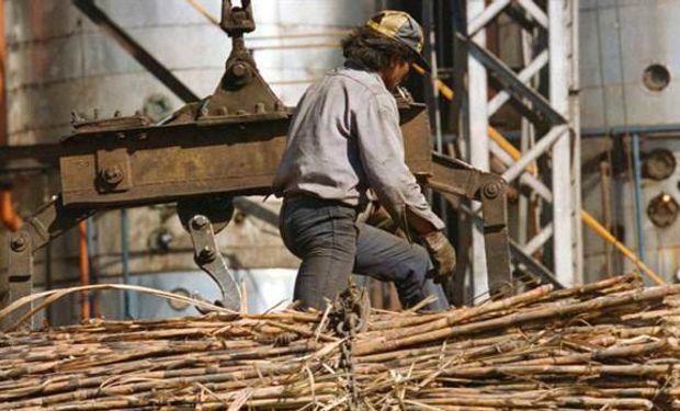 Preocupación en los integrantes del sector azucarero. Foto: LA NACION / Fernando Font