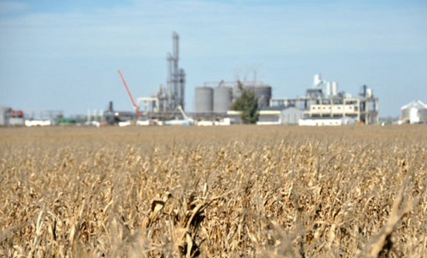 """Claudio Molina advierte que """"el precio resultante para el etanol de maíz sufrirá una importantísima reducción""""."""