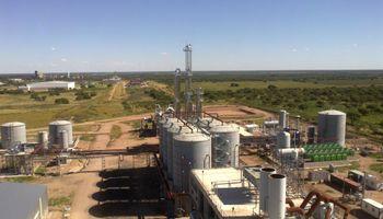 Bioetanol maicero: sector agroindustrial afectado por la devaluación